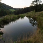 Feriencamp ROOTS Teich