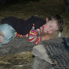 Feriencamp ROOTS am Feuer eingeschlafen